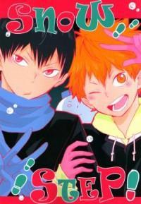 Haikyu!! Dj - Snow Step! manga